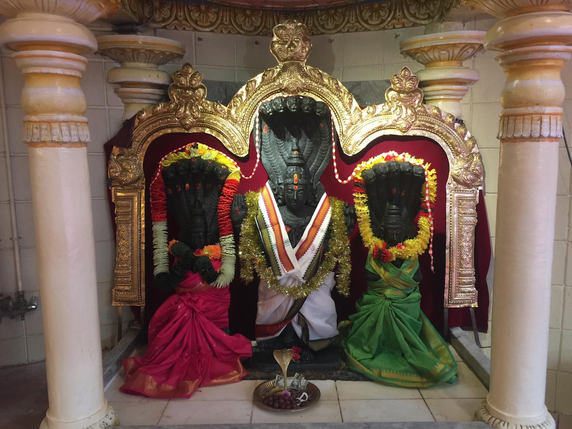 Naga Parivar image
